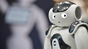 A robots.txt használatának bemutatása