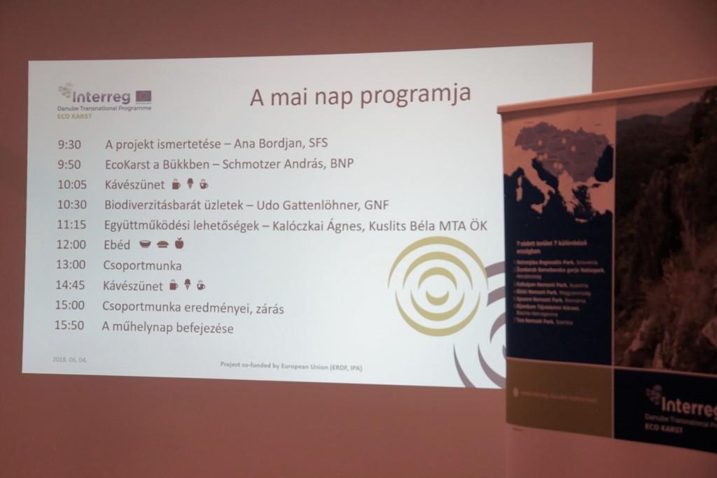 workshop lehetőségek