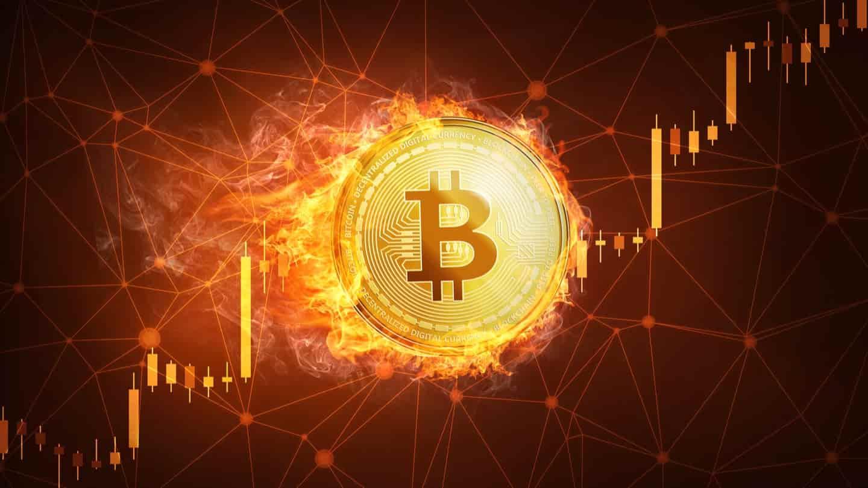 hogy néz ki a bitcoin)