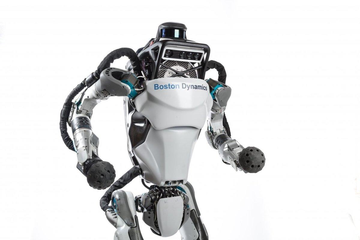 Robotok és rekordok