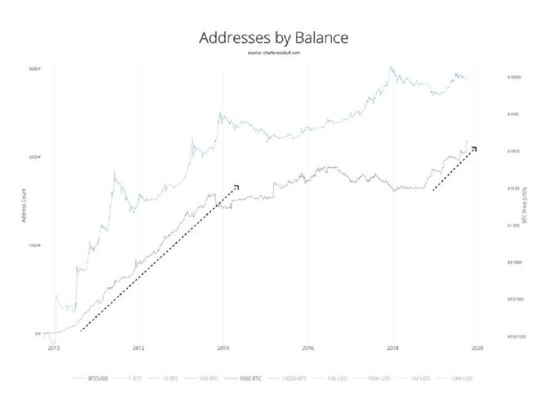 a bitcoin növekedési üteme