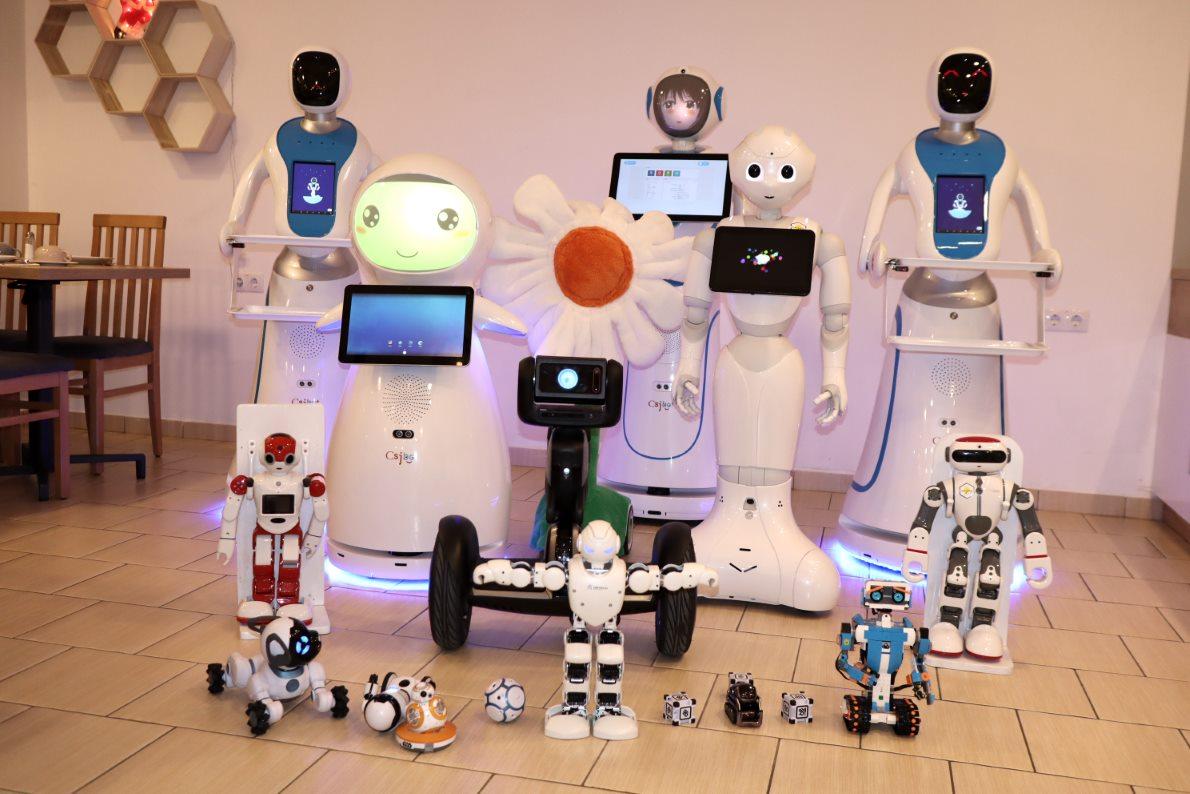Robot, amely valóban keres, Robot után kobot
